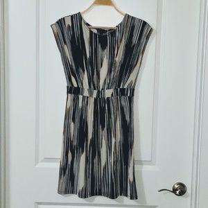 Banana Republic Vertical Print Dress
